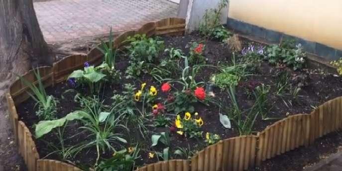 Egyre szebb a virágoskertünk